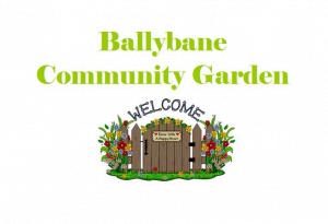 Ballybane Community Garden